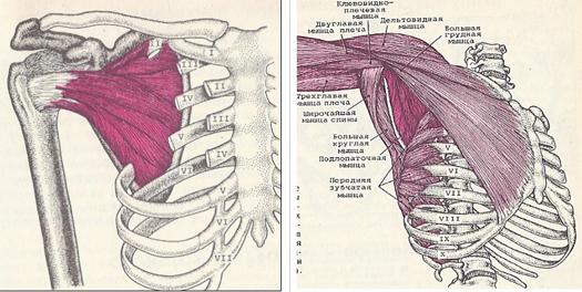 ropogás és ízületi fájdalom, mint a kezelés