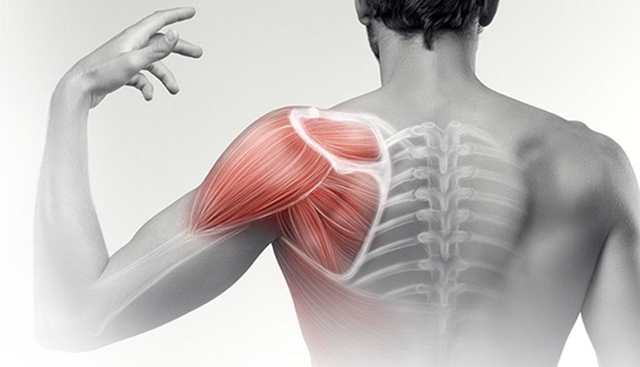 vállfájdalom fájdalom edzés után omez ízületi betegség esetén