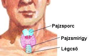 a boka fájdalmának kezelése járás közben