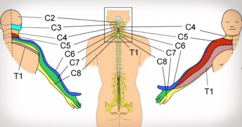 nyaki osteochondrozis tünetek kenőcskezelés artrózis modern kezelési rendjei