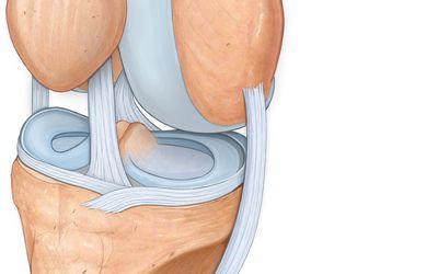 a térdízület meniszkuszának ízületi kezelése