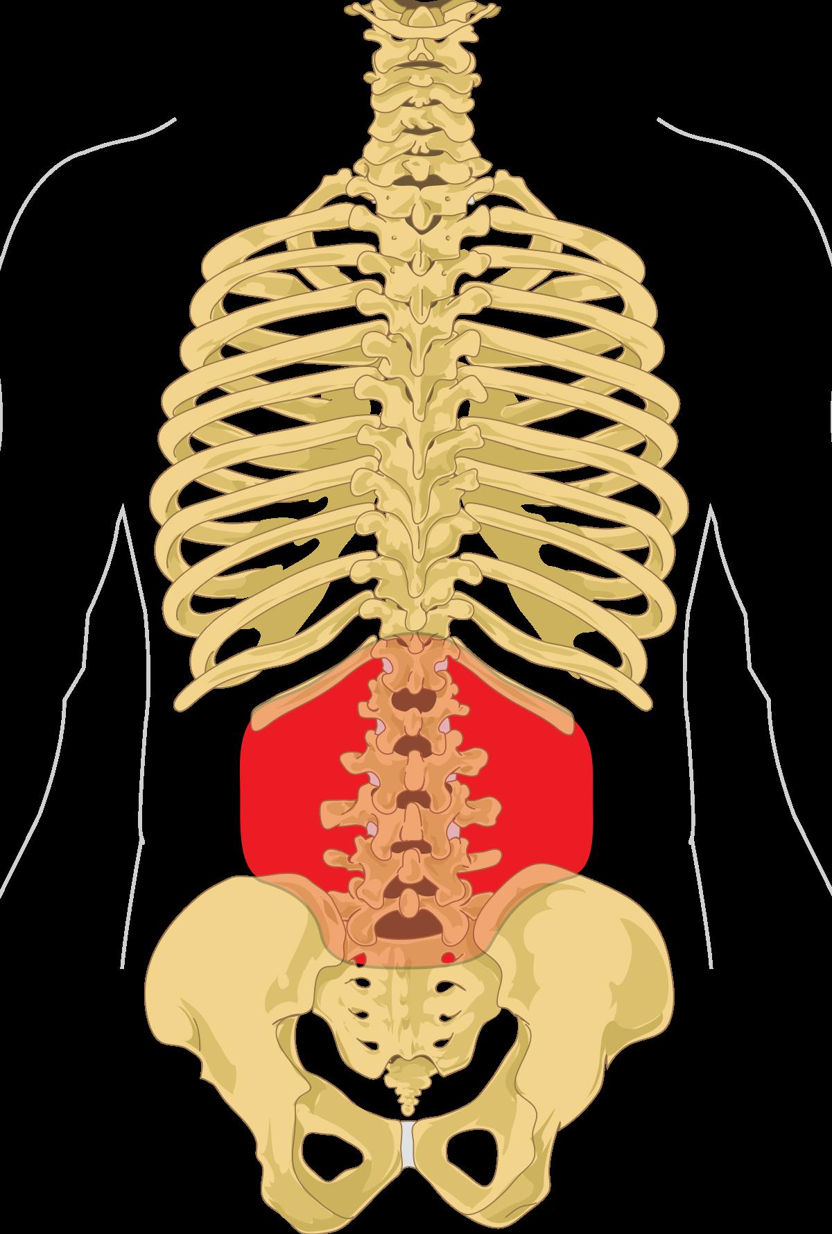 ízületi duzzanat gyors eltávolítása kenőcs a csípőízület bursitisére