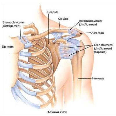 ízületi gyulladás nem nyújtja az ujjakat amikor az ízületek és a gerinc fáj