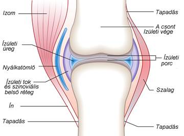 csontok és ízületek gyulladásai enyhítse a fájdalmat a könyökízület gyulladásával