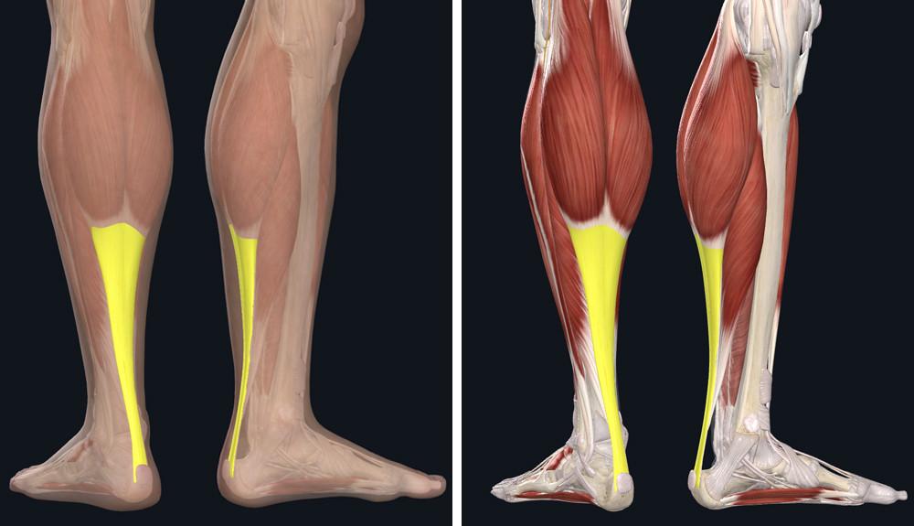 csípőízületek osteoarthrosisának előzményei láb- és ízületi fájdalomcsillapító gyógyszer