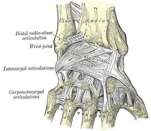 fájdalom a térd protézisek után