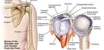 Vállműtét (Vállartroszkópia, Vállprotézis, Nyitott vállműtét) - Medicover