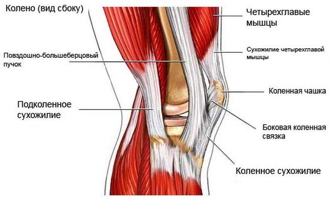 kompresszorok térd artrózisának kezelésére aki kezeli az ízületek bursitist