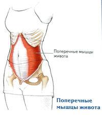 folyadék a térdízület artrózisában artrózis és köszvény kezelése