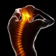 nyomásfájdalom a csípőízületben ízületi gyógyszer fermatron vásárlás