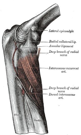 sternoclavicularis fájdalom