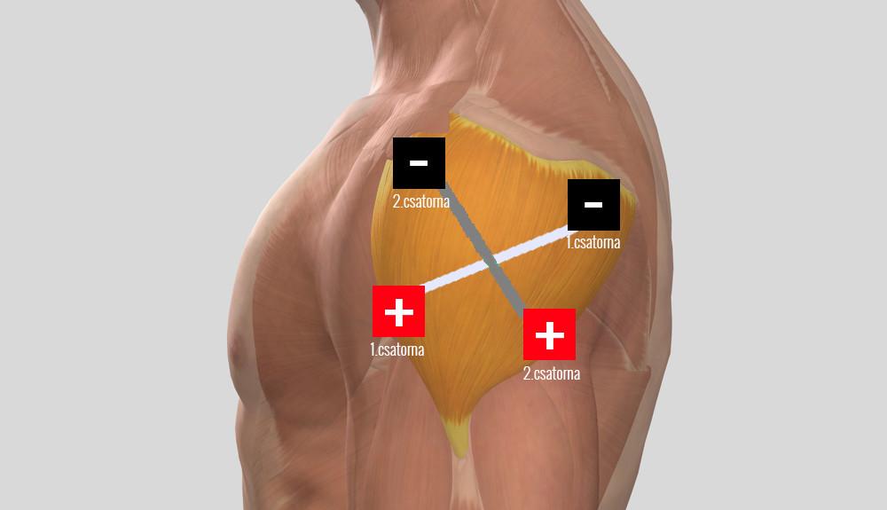 térd vasculitis kezelés zselatin artrózis kezelésére