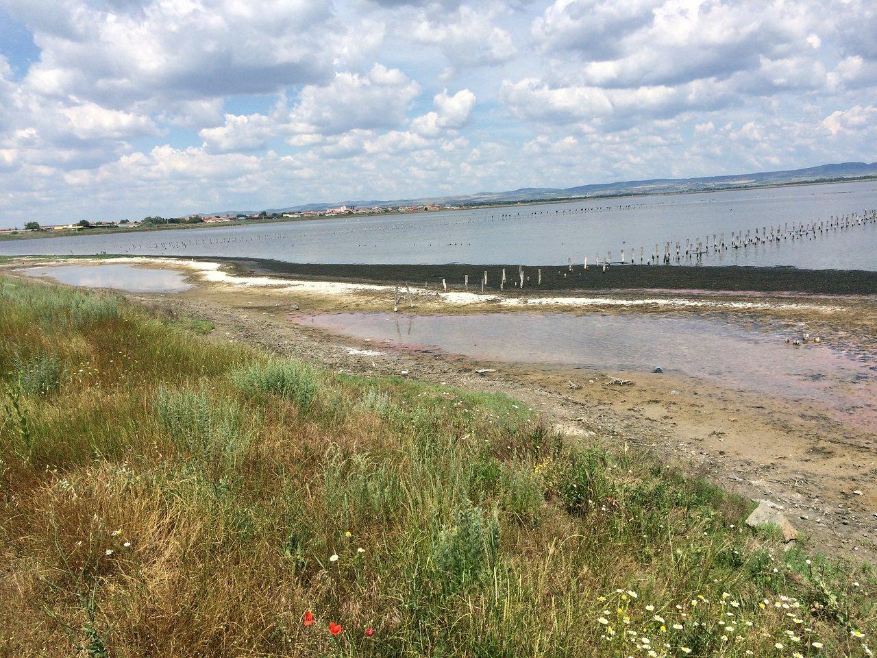 tengerpart ízületi kezelés