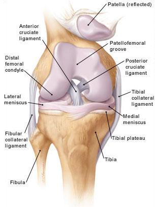 a térd oldalsó ínszalagjának gyulladása