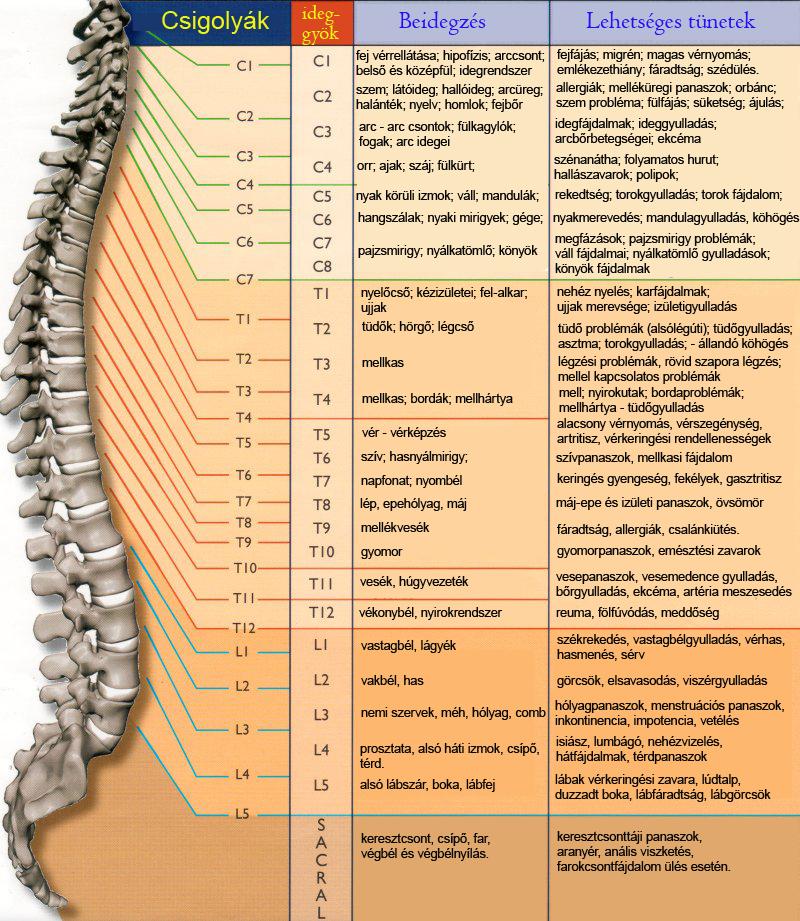 vélemények az artrózis zselatin kezeléséről